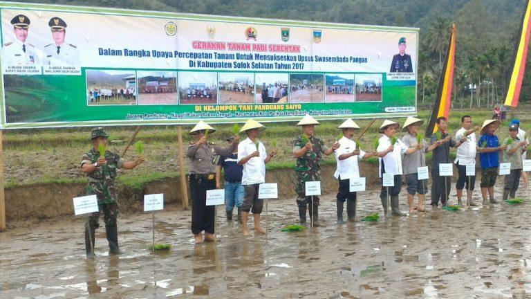 Banjir Besar Turunkan Produksi Padi Solok Selatan 2016