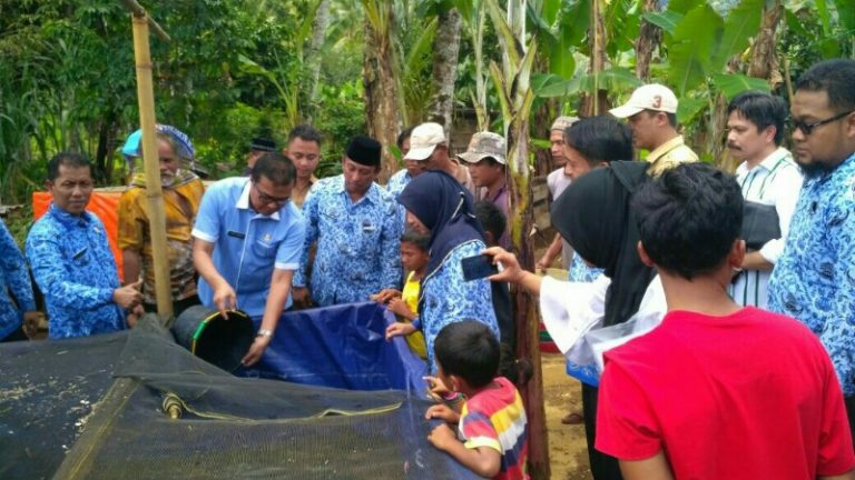 Solsel Tebar 100 ribu Bibit Ikan