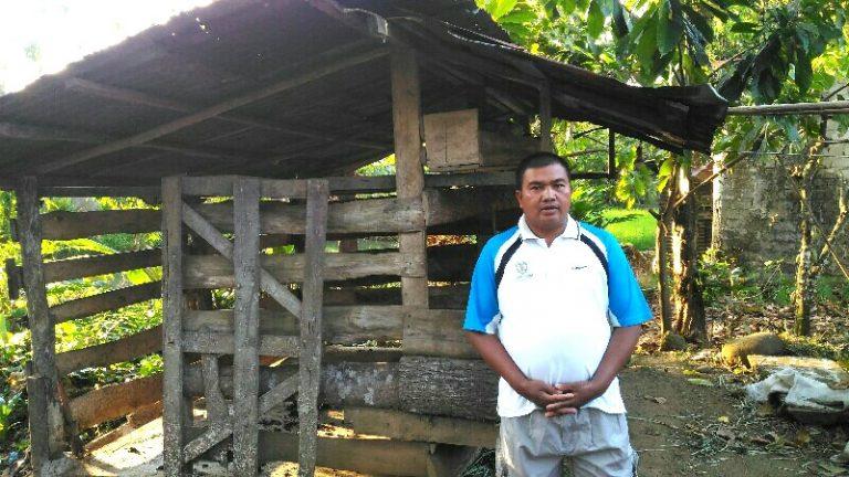 Tanpa Bersuara, Dua Ekor Sapi Di Belakang Rumah Dicuri